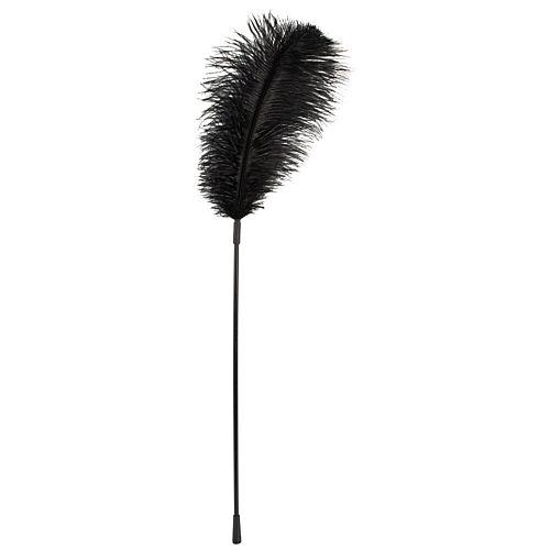 Велике чорне перо Подих вітру